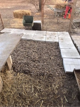 placing of tiles in some kennels