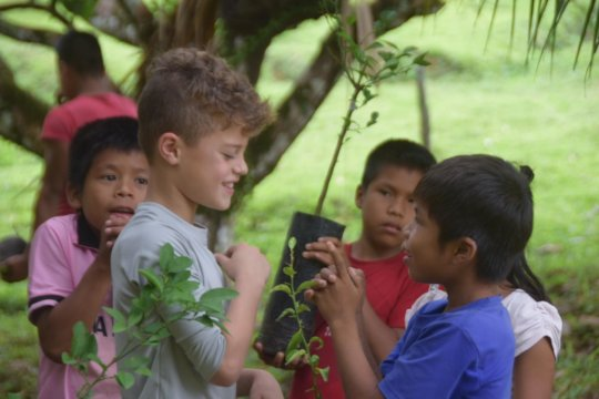 Planting at schools along the Amazon River in Peru