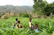 Provide access to healthcare in rural Haiti