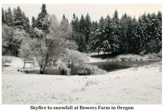 Skyfire to Snowfall