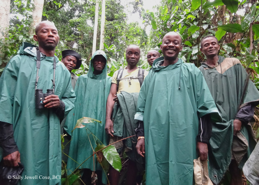 One of our dedicated bonobo tracking teams