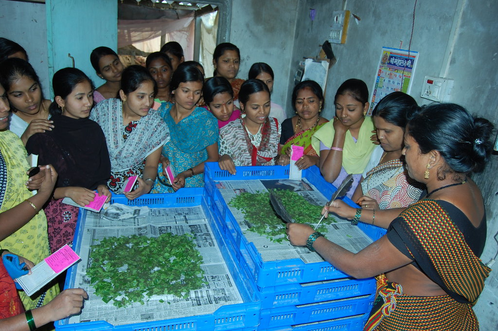 Help Rural Women Gain Essential Business Skills