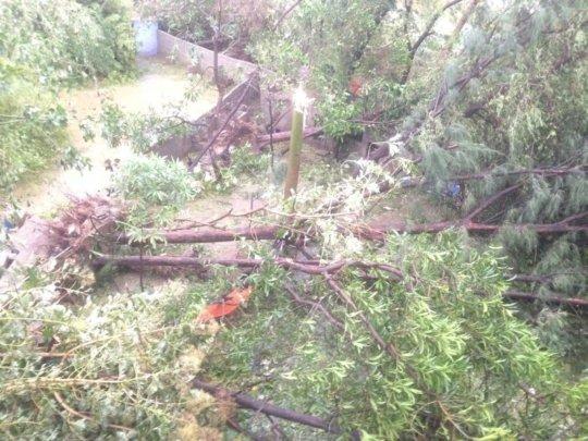 varrtha cyclone damage