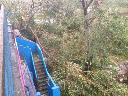 varrtha cyclone damage1