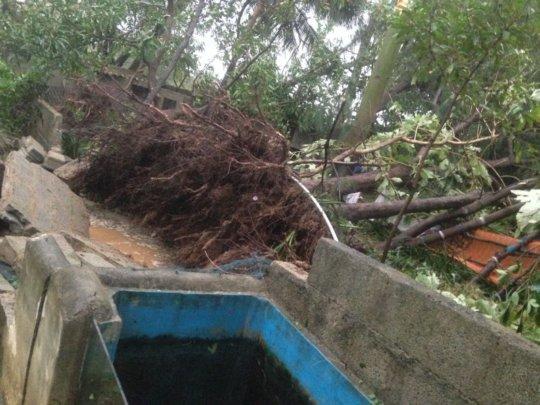 varrtha cyclone damage6