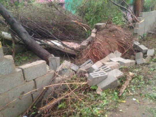 varrtha cyclone damage4