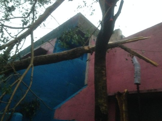 varrtha cyclone damage8