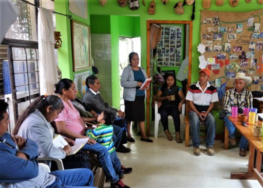Village commitees / Comites comunitarios
