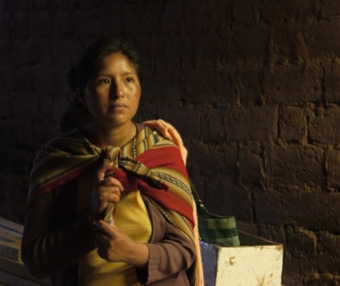 Empower Peruvian Women Living in Poverty