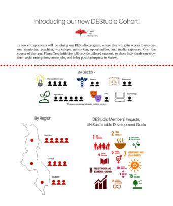 Introducing our DEStudio Cohort