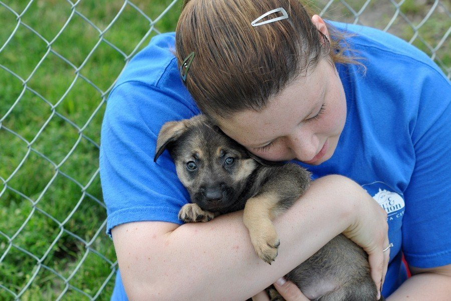 Christen Karniski: Help Homeless Animals
