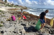 Emergency Response: Tackling a Plastic ocean