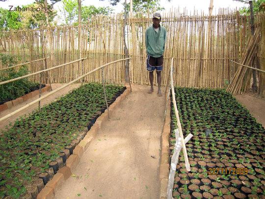 Jean - our master gardener from Fiarenana