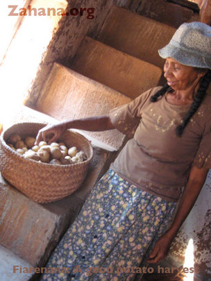 Showing her potato harvest