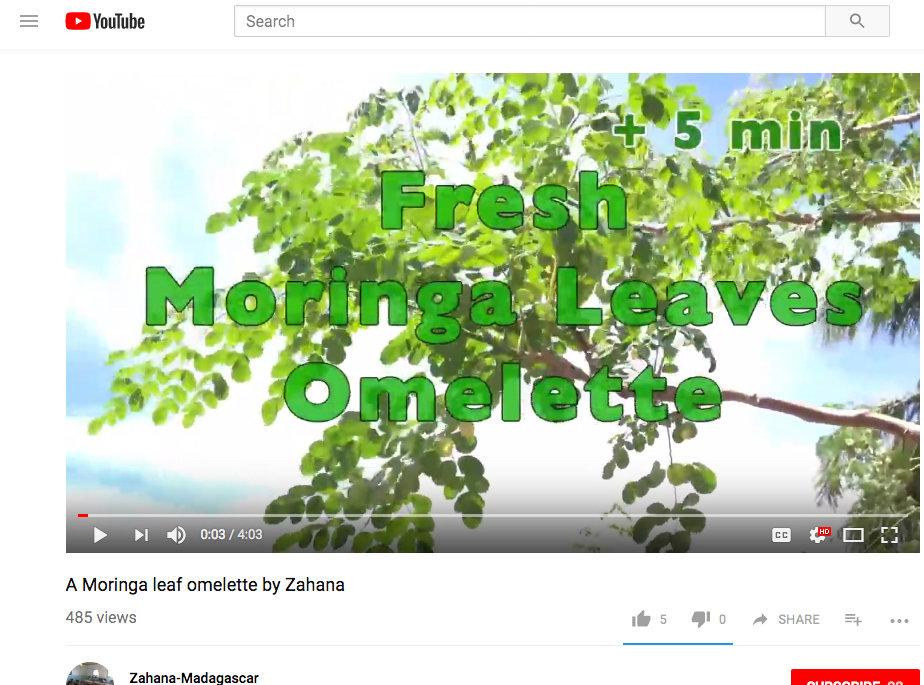 How to make a Moringa omelette video
