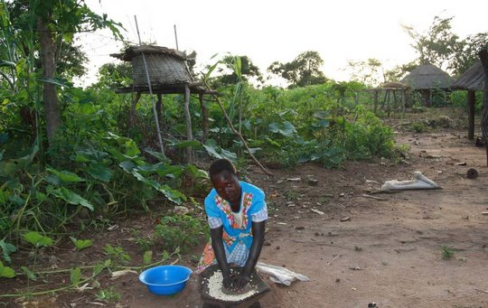 Omilling Girl Hand Grinding Maize