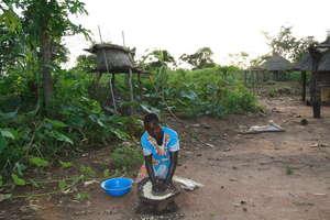 Hand grinding maize