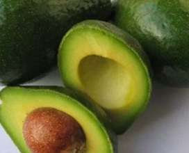 Omilling needs Avocado Fruit!