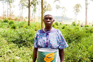 Laura Iteng - Omilling needs Fruit tree seedlings!