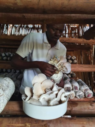 Steven Balyejjusa - Mercy Farms, Mityana, Uganda