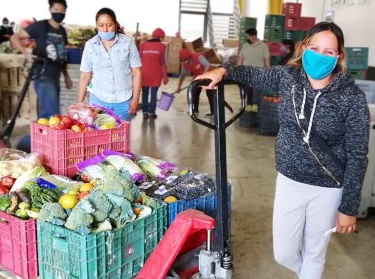 Food support at the Banco de Alimentos Puebla