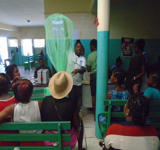 Teams providing a mosquito net simulation