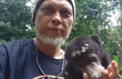 Help ISCP Become a Baby Bear Foster Parent