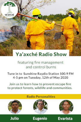Advertising Ya'axche radio show on fire management