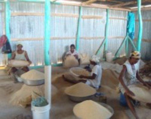 Women providing supplying the local market