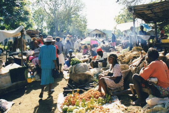 sellers in local market