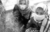 Emergency appeal COVID-19, Kabul and Herat