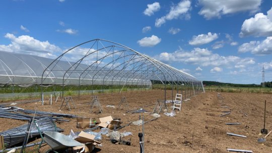 1st greenhouse construction