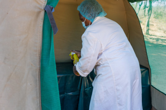 Sanitizing clinic tent before service provision.