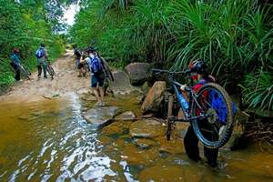 Mountain Biking Trek