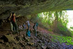 Bat Cave Trek