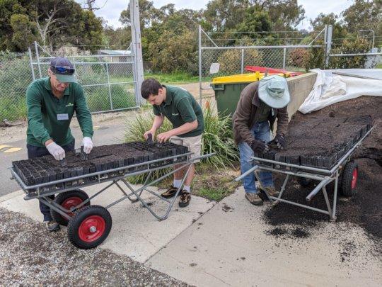 Bushfire-Recovery-Nursery-preparation