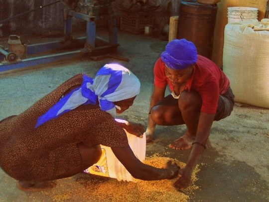 Women preparing grains for milling