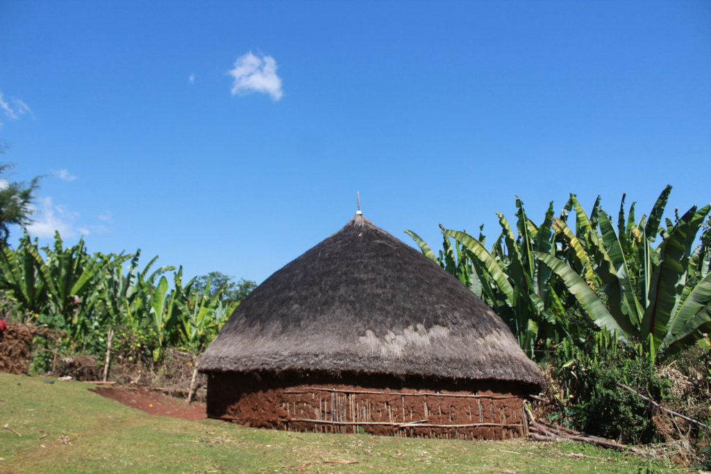 Traditional House at the site