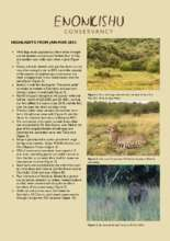 Q2 2021 Enonkishu Conservancy Highlights (PDF)
