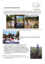 Q2_2020_Highlights.pdf (PDF)