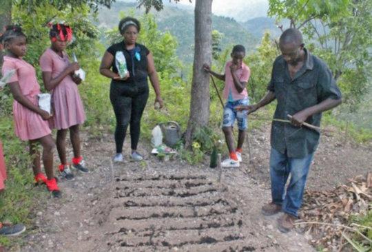 Creating garden beds