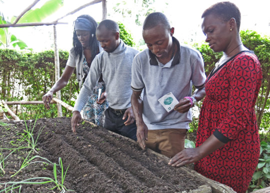 Gardens Grow Food for Families During COVID-19