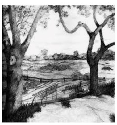 Landscape drawing by Yasmin who leads art group