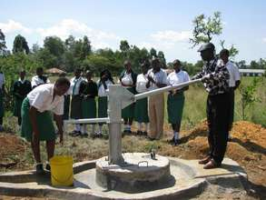 The borehole and hand pump