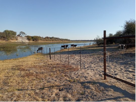 New National Park fence in place along the Boteti