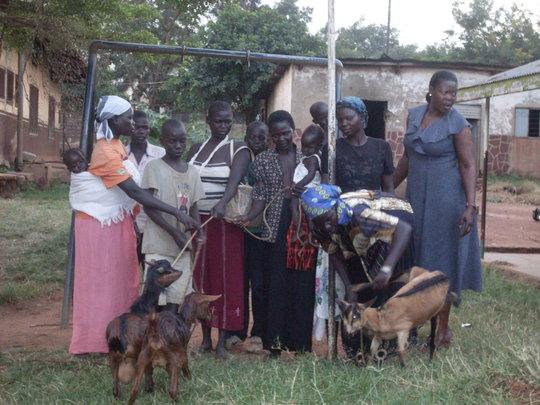 Families and children receiving goats