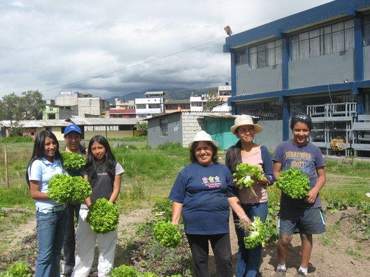 Organic Urban Agriculture in Quito, Ecuador