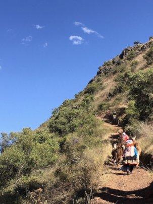 Participants practicing a Llama Trek circuit.
