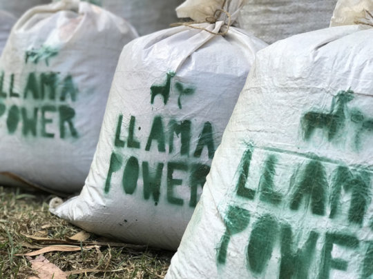 6. Llama Power, llama-based natural fertilizer.