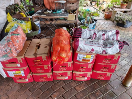 Food Donations to the Clinic in Napier